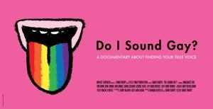 do-i-sound-gay_banner
